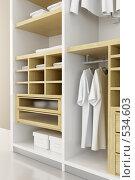 Купить «Шкаф», иллюстрация № 534603 (c) Дмитрий Кутлаев / Фотобанк Лори