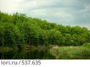 Купить «Река на фоне леса», фото № 537635, снято 3 мая 2008 г. (c) Сергей Литвиненко / Фотобанк Лори