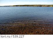 Тихое озеро в солнечную погоду. Стоковое фото, фотограф Алексей Семенов / Фотобанк Лори