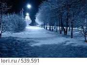 Купить «Ночной город», фото № 539591, снято 27 ноября 2007 г. (c) podfoto / Фотобанк Лори