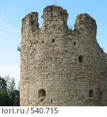Купить «Башни крепости Копорье», фото № 540715, снято 12 августа 2007 г. (c) Заноза-Ру / Фотобанк Лори