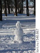 Купить «Снежная баба», фото № 540867, снято 27 января 2008 г. (c) Ольга Лерх Olga Lerkh / Фотобанк Лори