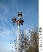 Уличный фонарь. Стоковое фото, фотограф Geo Natali / Фотобанк Лори