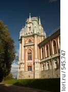Купить «Дворец Екатерины», фото № 545747, снято 29 сентября 2008 г. (c) Юрий Беляков / Фотобанк Лори
