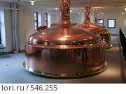 Купить «Пивоварня Карлсберг Brewery Carlsberg», фото № 546255, снято 5 января 2007 г. (c) Андрей Короткевич / Фотобанк Лори