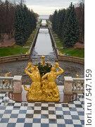 Купить «Вот и лето прошло....», фото № 547159, снято 3 ноября 2008 г. (c) Олег Трушечкин / Фотобанк Лори