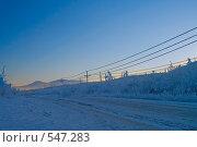 Купить «Зимняя полярная дорога на закате», фото № 547283, снято 5 ноября 2006 г. (c) Ольга Красавина / Фотобанк Лори