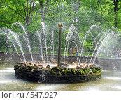 Купить «Фонтан», фото № 547927, снято 17 июня 2008 г. (c) Алексей Алексеев / Фотобанк Лори