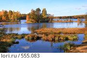 Золотая осень. Стоковое фото, фотограф Ольга Киселева / Фотобанк Лори