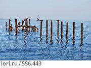 Купить «Всё, что осталось от пирса», фото № 556443, снято 4 сентября 2008 г. (c) Kate Kovalenko / Фотобанк Лори
