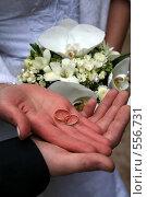 Обручальные кольца. Стоковое фото, фотограф Ehduard Khabirov / Фотобанк Лори