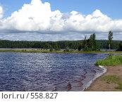 Купить «Озеро», фото № 558827, снято 1 августа 2008 г. (c) Алексей Алексеев / Фотобанк Лори