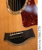Купить «Струны на гитаре», фото № 560779, снято 12 октября 2008 г. (c) Вячеслав Жуковский / Фотобанк Лори