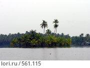 Купить «Остров кокосовых пальм», фото № 561115, снято 20 ноября 2005 г. (c) Марина Бандуркина / Фотобанк Лори