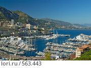 Купить «Вид на город и бухту Монте Карло. Монако», фото № 563443, снято 8 июля 2008 г. (c) Евгений Дробжев / Фотобанк Лори