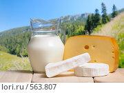 Купить «Сыр и молоко», фото № 563807, снято 23 марта 2019 г. (c) Stockphoto / Фотобанк Лори