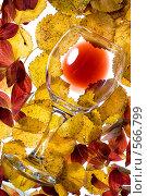 Купить «Бокал красного вина», фото № 566799, снято 17 сентября 2008 г. (c) Зайцева Ольга / Фотобанк Лори