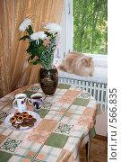 Чай с печеньем. Стоковое фото, фотограф Александр Рябов / Фотобанк Лори
