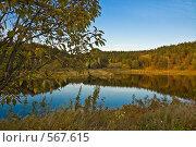 Купить «Осенний пруд», фото № 567615, снято 5 октября 2008 г. (c) Андрей Винокуров / Фотобанк Лори