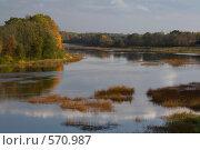 Купить «В осенью по берегу реки Пярну», фото № 570987, снято 4 октября 2008 г. (c) Aleksander Kaasik / Фотобанк Лори