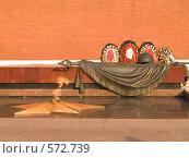 Купить «Вечный огонь у Кремлевской стены в Москве», фото № 572739, снято 21 августа 2007 г. (c) Туркин Вадим / Фотобанк Лори