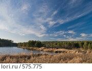 Купить «Осенний пейзаж», фото № 575775, снято 31 октября 2008 г. (c) Юрий Бельмесов / Фотобанк Лори