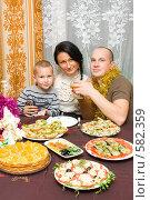 Купить «Семья встречает Новый год», фото № 582359, снято 9 октября 2008 г. (c) Ольга Красавина / Фотобанк Лори