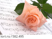Купить «Роза на нотах», фото № 582495, снято 29 июня 2008 г. (c) Cветлана Гладкова / Фотобанк Лори