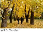 Купить «Пара в осеннем парке», фото № 583627, снято 31 октября 2008 г. (c) Мирослава Безман / Фотобанк Лори