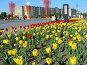 Москва. Парк Победы., эксклюзивное фото № 584363, снято 8 мая 2008 г. (c) lana1501 / Фотобанк Лори
