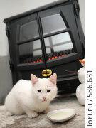 Купить «Котенок на фоне камина», фото № 586631, снято 27 ноября 2007 г. (c) Екатерина Тимонова / Фотобанк Лори