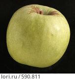Купить «Зеленое яблоко», фото № 590811, снято 29 ноября 2008 г. (c) Vadim Tatarnitsev / Фотобанк Лори