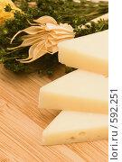 Купить «Сыр пармезан», фото № 592251, снято 2 ноября 2008 г. (c) Бутенко Андрей / Фотобанк Лори