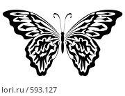 Купить «Бабочка», иллюстрация № 593127 (c) Сергей Лаврентьев / Фотобанк Лори