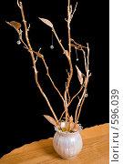 Купить «Композиция для своего дома», фото № 596039, снято 30 ноября 2008 г. (c) Федор Королевский / Фотобанк Лори