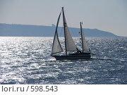 Купить «Кораблик», фото № 598543, снято 30 ноября 2008 г. (c) Zlataya / Фотобанк Лори