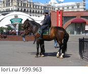 Купить «Москва. Конная милиция», эксклюзивное фото № 599963, снято 8 июня 2008 г. (c) lana1501 / Фотобанк Лори