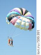 Купить «Пара летающая тандемом», фото № 599991, снято 16 июля 2008 г. (c) Мария Смирнова / Фотобанк Лори