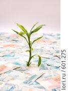 Купить «Рост российского рубля», фото № 601275, снято 3 декабря 2008 г. (c) Виталий Романович / Фотобанк Лори
