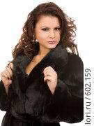 Купить «Девушка в шубе», фото № 602159, снято 29 ноября 2008 г. (c) Валентин Мосичев / Фотобанк Лори
