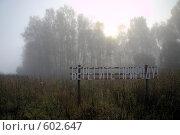 Туманным утром на опушке леса. Стоковое фото, фотограф Олег Титов / Фотобанк Лори
