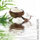 Купить «Кокос и пальма в воде», иллюстрация № 603215 (c) Алина Анохина / Фотобанк Лори