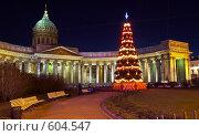 Купить «Новогодняя ёлка на  площади перед Казанским собором Санкт-Петербурга», фото № 604547, снято 3 января 2008 г. (c) Ирина Мойсеева / Фотобанк Лори
