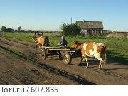 Купить «Гужевой транспорт», фото № 607835, снято 18 июня 2008 г. (c) Талдыкин Юрий / Фотобанк Лори