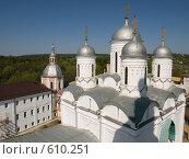 Пафнутий Боровский монастырь (2008 год). Стоковое фото, фотограф Миронова Евгения / Фотобанк Лори