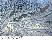 Купить «Морозный узор на стекле», фото № 612791, снято 5 февраля 2006 г. (c) Елена Ликина / Фотобанк Лори