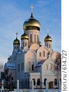 Купить «Троице-Владимирский собор. Новосибирск», фото № 614727, снято 13 декабря 2008 г. (c) Виктор Ковалев / Фотобанк Лори