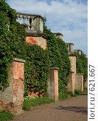 Сад Венеры в Петродворце (2008 год). Редакционное фото, фотограф Смирнова Ольга / Фотобанк Лори