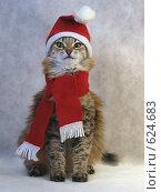 Купить «Снегурочка», фото № 624683, снято 18 декабря 2008 г. (c) Вячеслав Жуковский / Фотобанк Лори