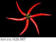 Чилийский перец. Стоковое фото, фотограф Лифанцева Елена / Фотобанк Лори